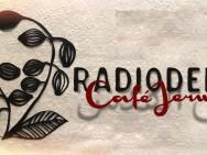 radiodervish-musicraiser-cover